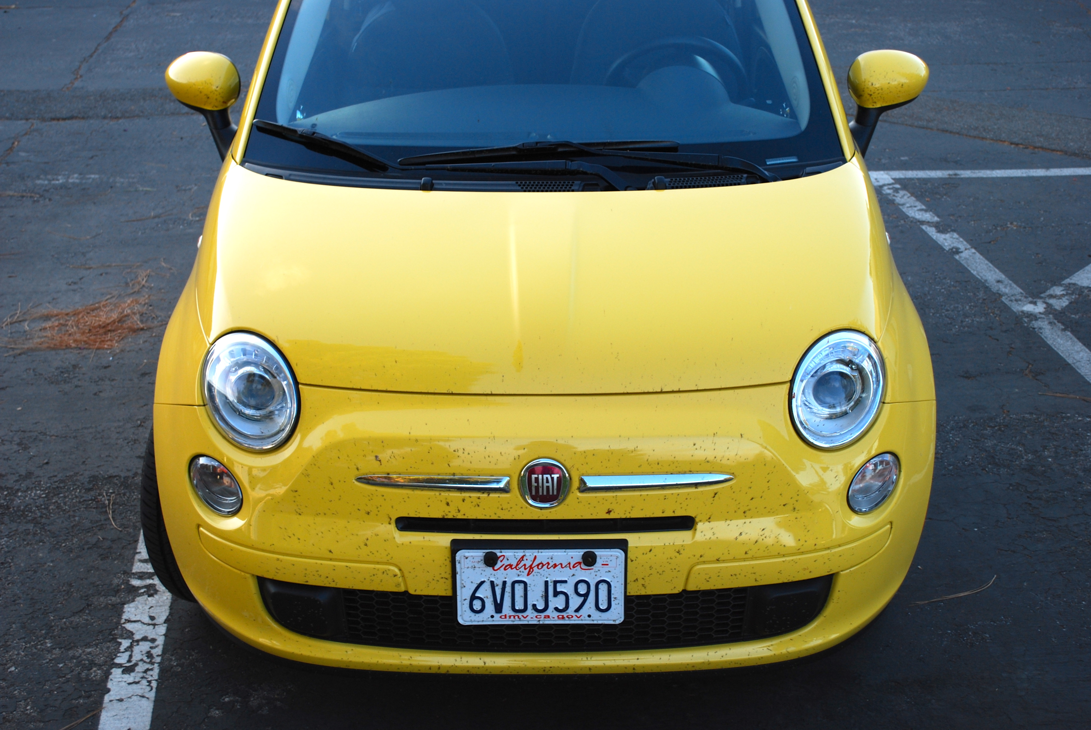 Fiat 500: Yeah, I did that...